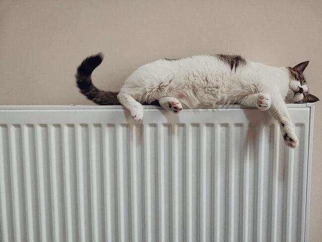 Radiateur chauffage électrique en copropriété