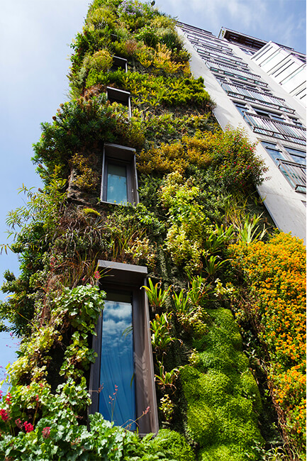 Installer un mur végétal copropriété