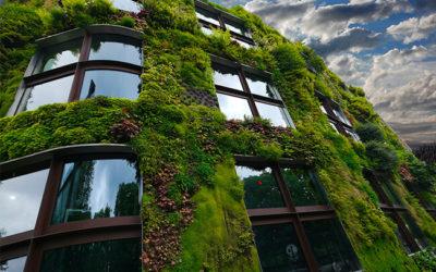 Mur végétal en copropriété, quel impact sur les charges ?